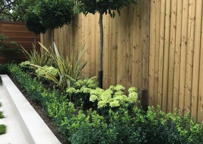 Garden-Design-Kent-6