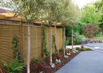 Landscape-Designers-Surrey-8